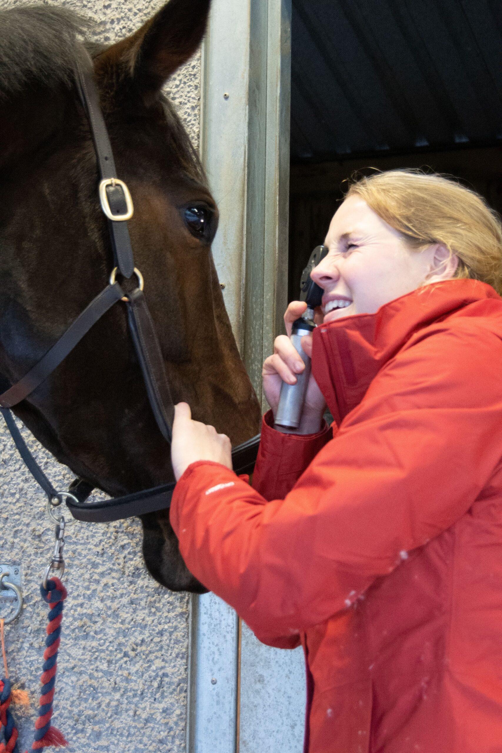 Horse vetting in perth
