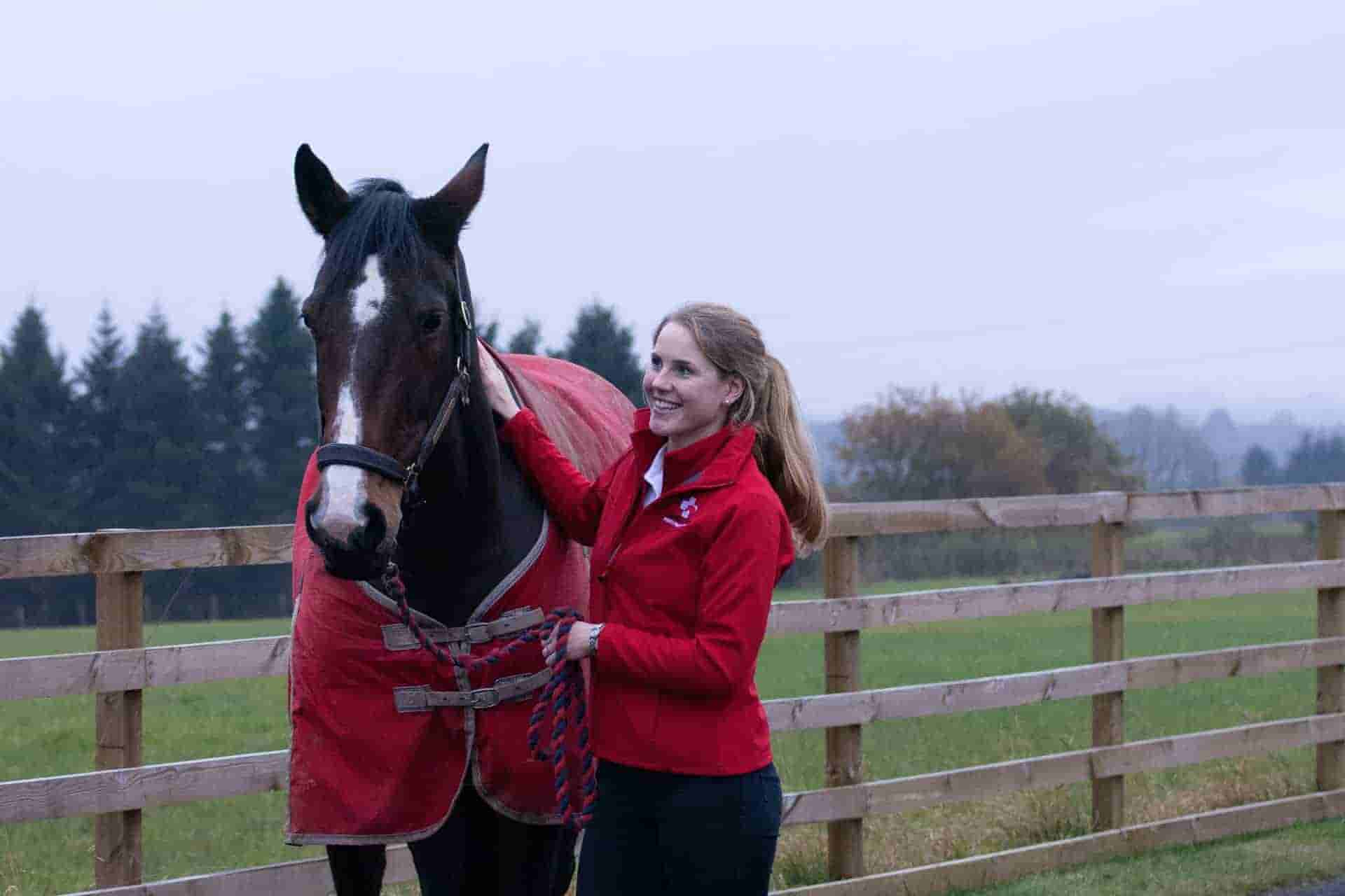 Horse Vet Perth